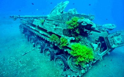 Diving sites In Aqaba-  Tank